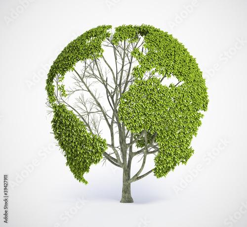 Plakaty ekologiczne drzewo-mapy-ziemi