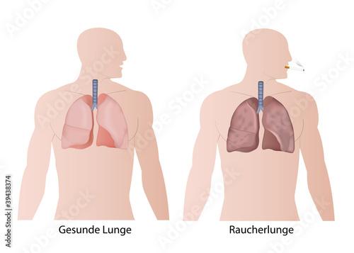 Valokuva raucher lunge und gesunde lunge vergleich eps illustration