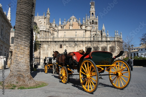 Fototapety, obrazy: carriage waiting for tourists in Seville