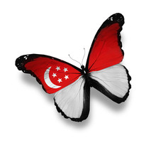 Singaporean Flag Butterfly, Is...