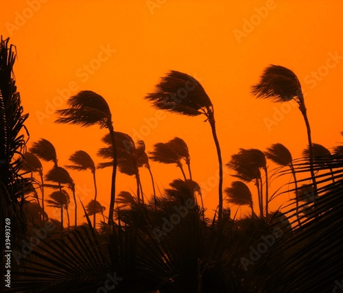 Photo sur Toile Tempete tropical storm