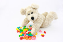 White Teddy Bear With Colorful Candies