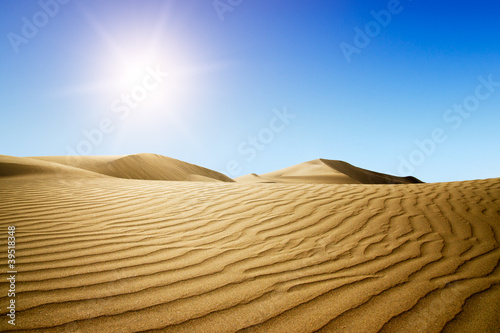 Poster de jardin Desert de sable Gold desert into the sunset.