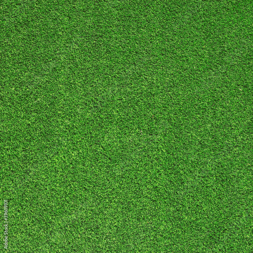 Artificial Grass Canvas Print