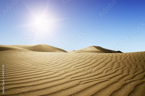 Photo sur Toile Desert de sable Gold desert into the sunset.