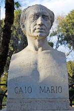 Rome Gaio Mario Statue At Borghese Villa