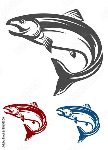 Fotografía  Salmon fish