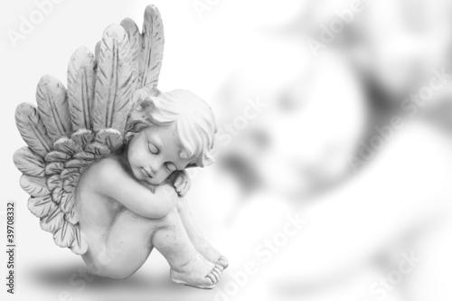 Fotografie, Obraz  Träumender Engel freigestellt auf weiß
