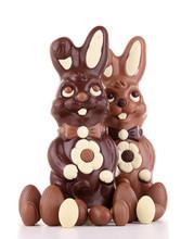 Chocolate Easter Bunny Isolated