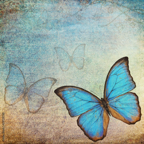 Garden Poster Butterflies in Grunge vintage background