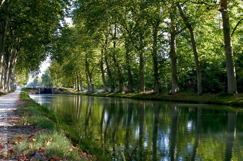 Fotografie, Obraz  Canal du Midi