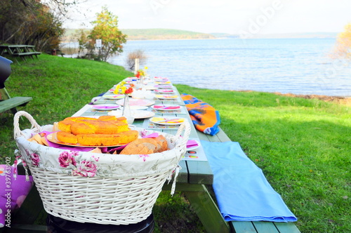 Ingelijste posters Picknick picnic table on nature