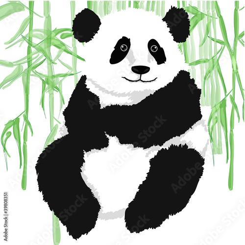panda-z-bambusowymi-roslinami-na-bialym-tle