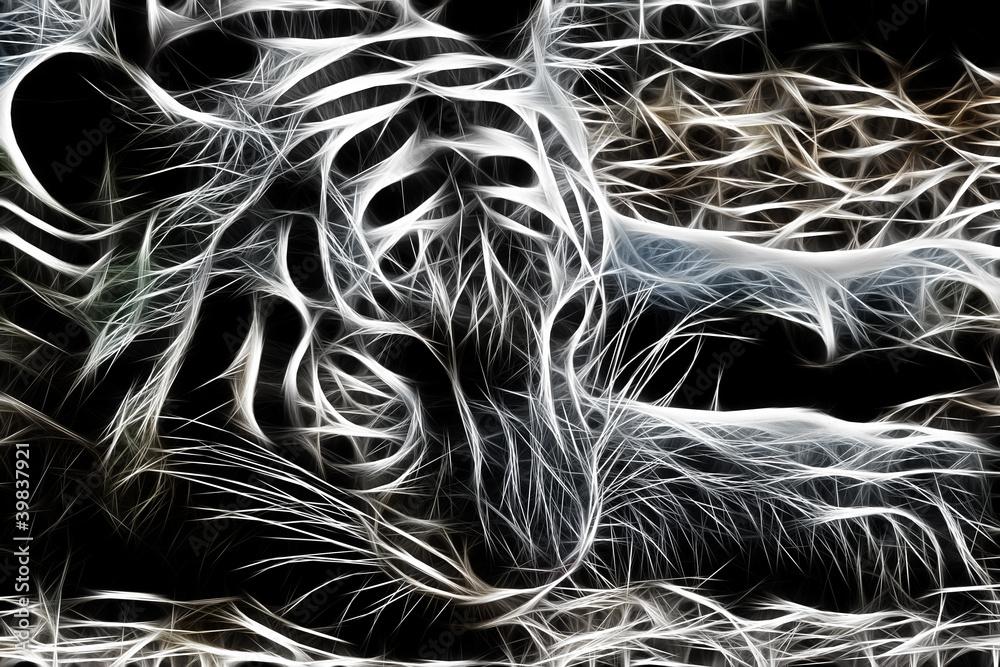 Fototapety, obrazy: Abstrakcyjny tygrys