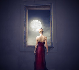 Fototapeta Popularne Under the moonlight