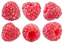 Collection Of Ripe Red Raspberries