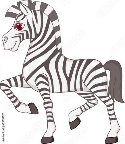 zebra-kreskowki