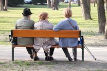 Drei Alte Damen Mit Krücken Auf Der Parkbank