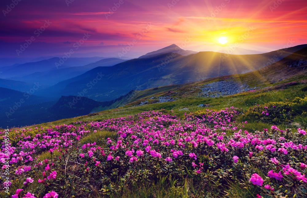 Fototapeta mountain landscape