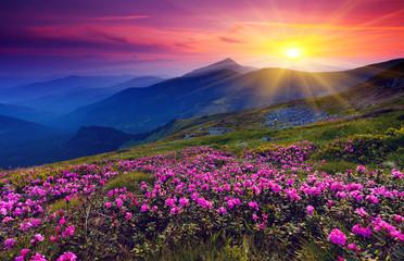 Naklejka mountain landscape