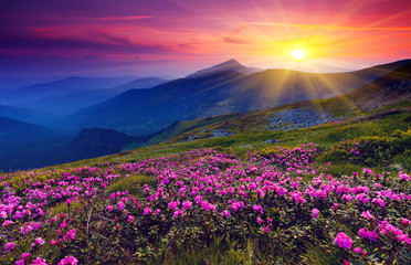 Obraz mountain landscape