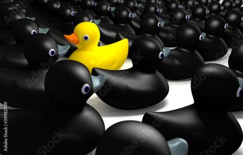 Fotografie, Obraz  Rubber Duck Against The Flow