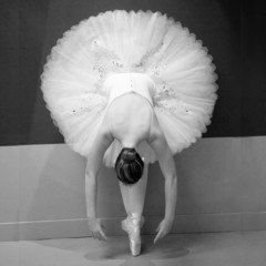 FototapetaBallet Dancer