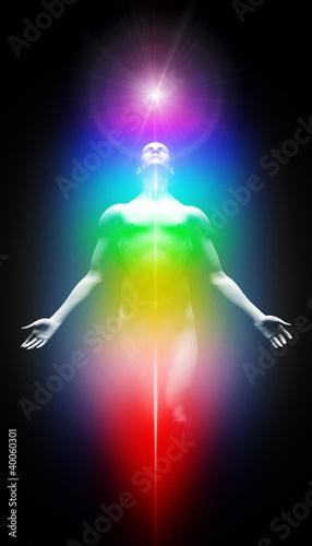 Doppelrollo mit Motiv - Transformation ins Licht