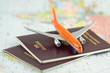 canvas print picture - passeport, voyage par avion