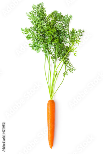 Fotografía Root-crop of carrot with green tops