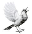 Leinwandbild Motiv Vogel