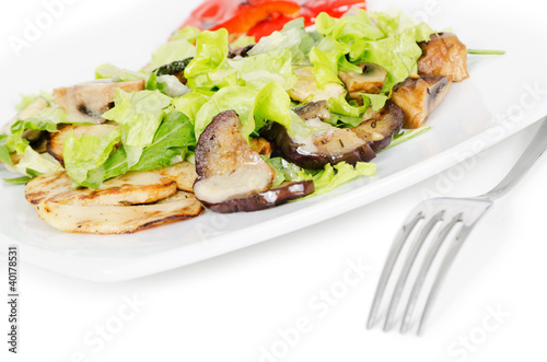 Fotografie, Obraz  beef salad with grilled vegetables on white background