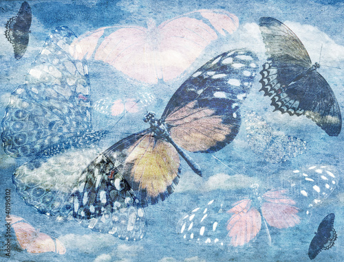 Garden Poster Butterflies in Grunge Abstract Butterfly Background