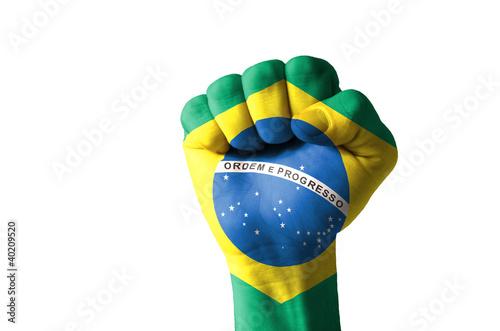Fotografie, Obraz  Fist painted in colors of brazil flag