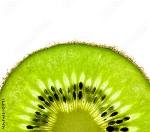 Aluminium Prints Slices of fruit Slice of a fresh Kiwi / Super Macro / back lit