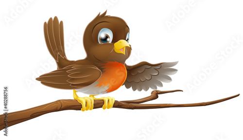 Photo  Robin bird on branch pointing