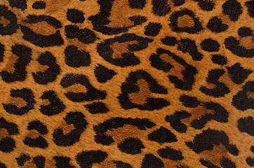 Leopard uzorka