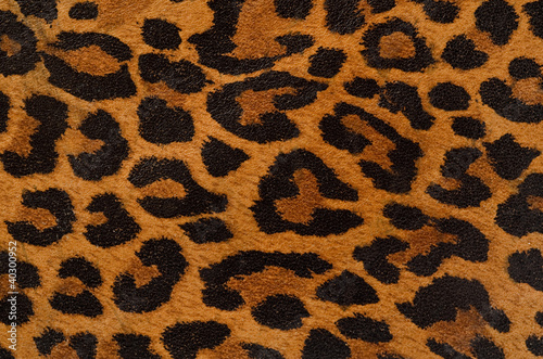 Canvas Prints Leopard Leopard print pattern