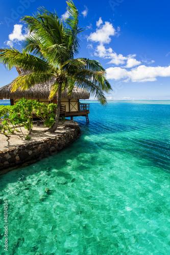 tropikalna-willa-i-palmy-obok-zielonej-laguny