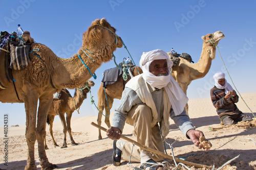 Fényképezés  Sahara : Recherche de roses des sables