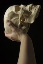 Hand With Scull On Black Background