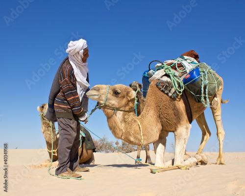 Valokuva  Chamelier dans le désert
