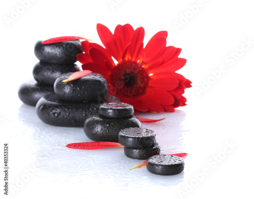 Papiers peints Rouge, noir, blanc Spa stones with drops, red flower and petals isolated on white