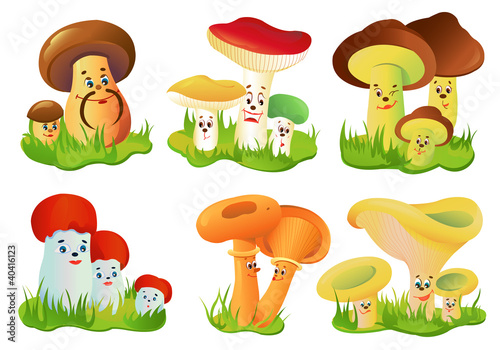 Foto auf Gartenposter Die magische Welt Mushrooms