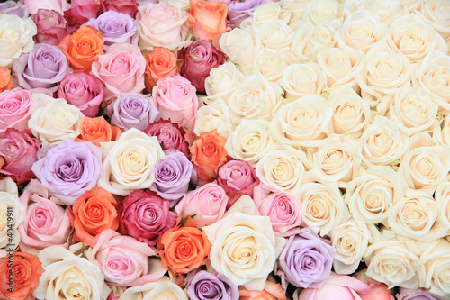 Fleur Pastel rose wedding flowers