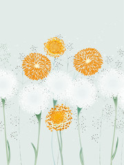 Fototapeta Dmuchawce Illustration of abstract flowers, dandelions and herbs
