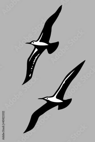 Fotografía  flying birds silhouette on gray background
