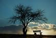 canvas print picture - Einsame Winterbank