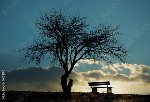 Einsame Winterbank Fotobehang