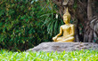 gold image of buddha under Bodhi tree